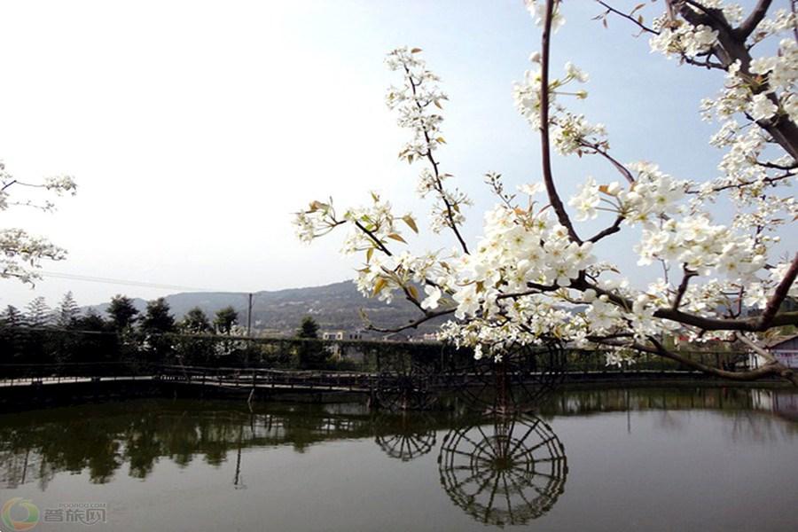 苍溪旅游景点图片列表_苍溪旅游图片_苍溪风景图片